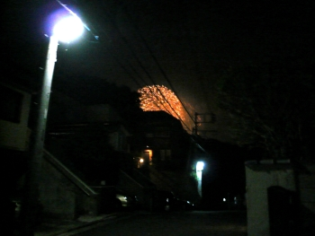 P1020111.jpg