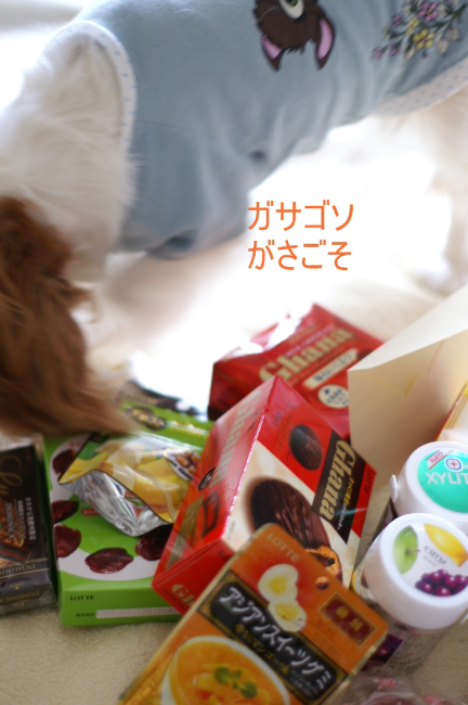 f_20080712004047.jpg