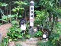 高尾山-陣馬山18
