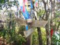 2008年秋金時山・明神ヶ岳・明星ヶ岳・阿弥陀寺15
