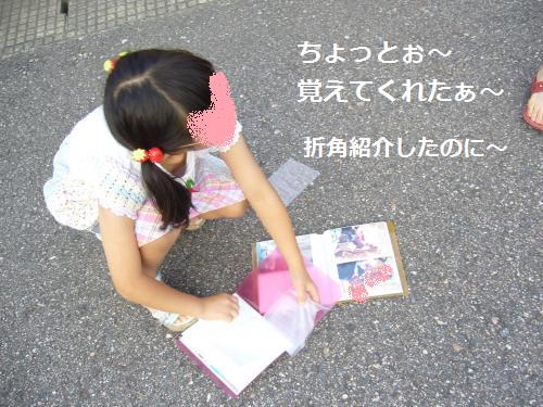 P1060489_convert_20080707113118.jpg