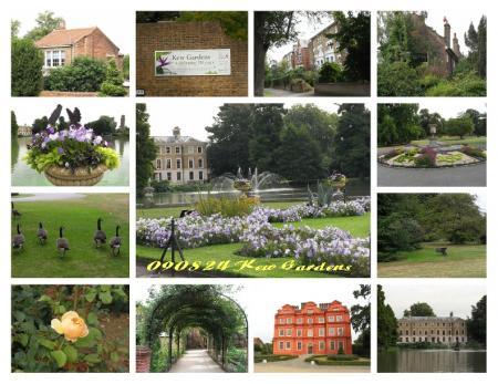 090824kew-gardens(2).jpg