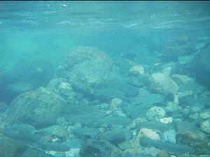2005-08-16.jpg