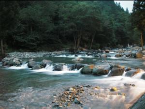2005-08-28.jpg