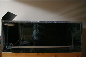 2006-01-25.jpg