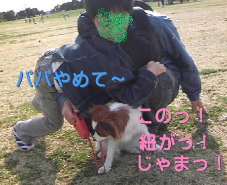 09032119_1.jpg