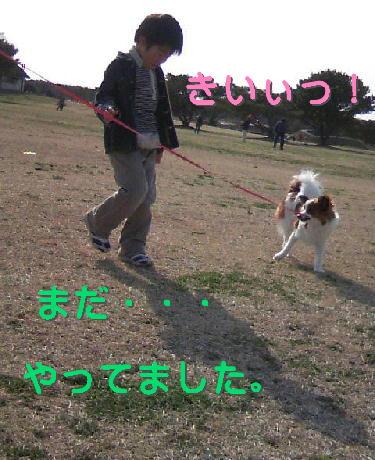 09032121_1.jpg
