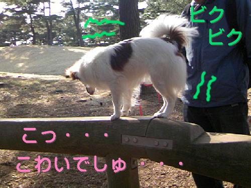 09032122_1.jpg