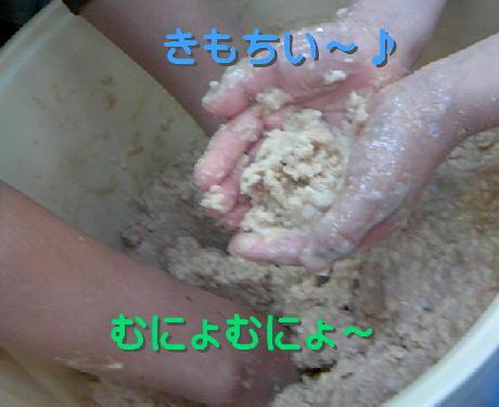 09032806_1.jpg