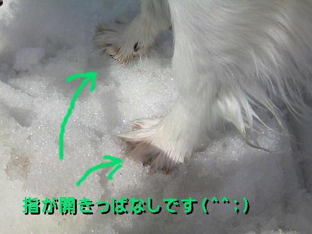 09050214_1.jpg