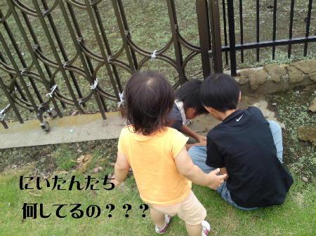 09070504_1.jpg