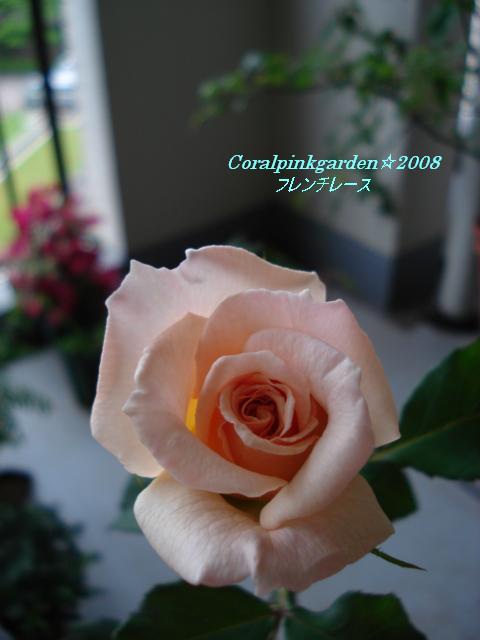 ベランダ 022