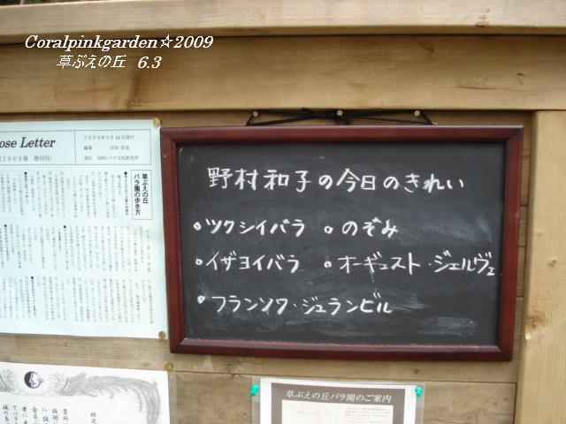DSC06032.jpg