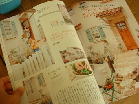 blog134.jpg