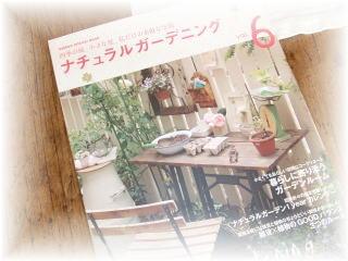 blog222.jpg