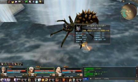 capture_01383金蜘蛛