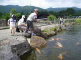 牧場01(池の魚)