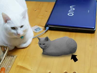 cat1044