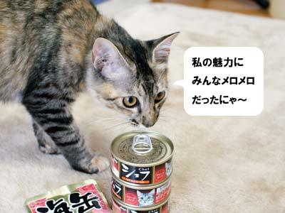 cat1272