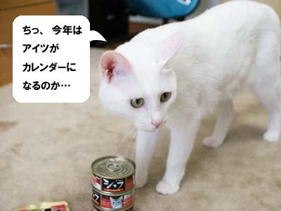cat1273