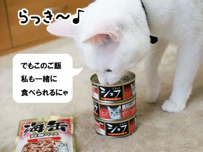 cat1274