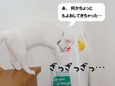 cat430