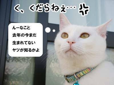 cat530