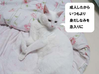 cat574