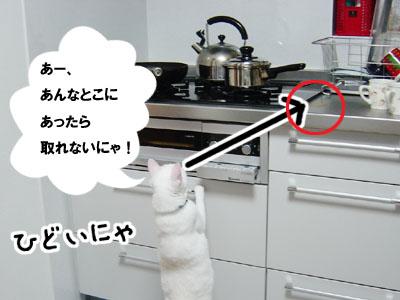 cat694