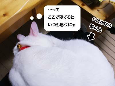 cat730