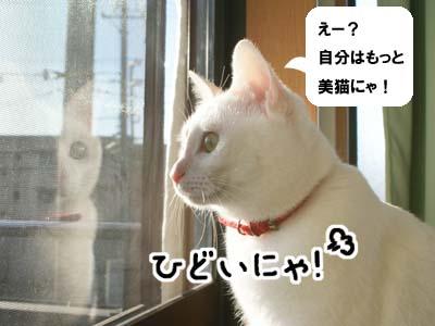 cat793