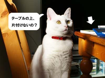 cat839