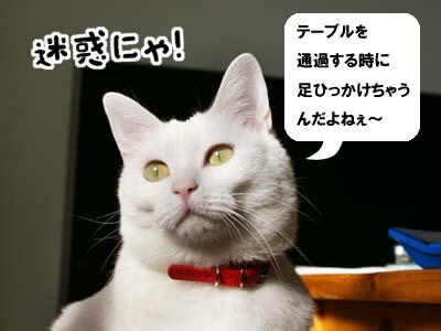 cat840