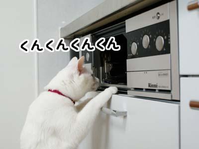 cat913