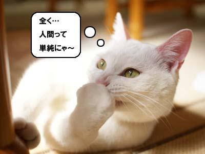 cat940