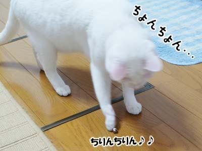 cat948