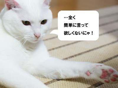 cat990
