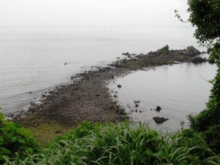 2008.6.20