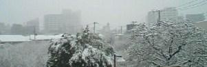 2008年雪☆