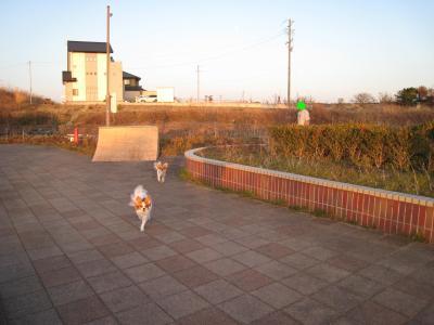 親水公園 ④