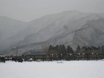 初めての雪 ③