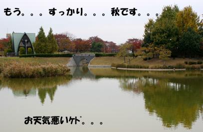 061119-1.jpg