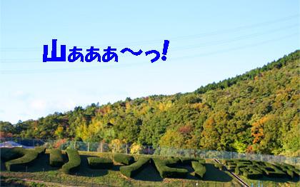20061113095833.jpg