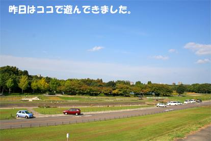 2008-10-11-1.jpg