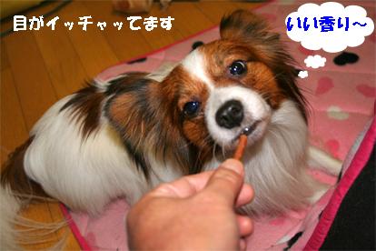 2_20071130094800.jpg