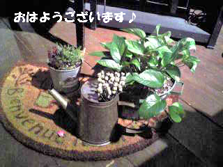 Image078.jpg
