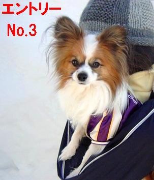 Q-3.jpg