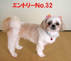Q-32.jpg