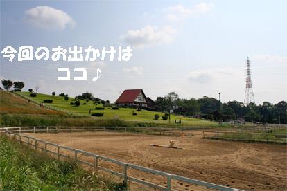 aiboku081004-1.jpg