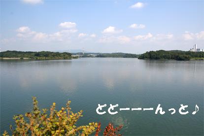 aichiike081008-1.jpg